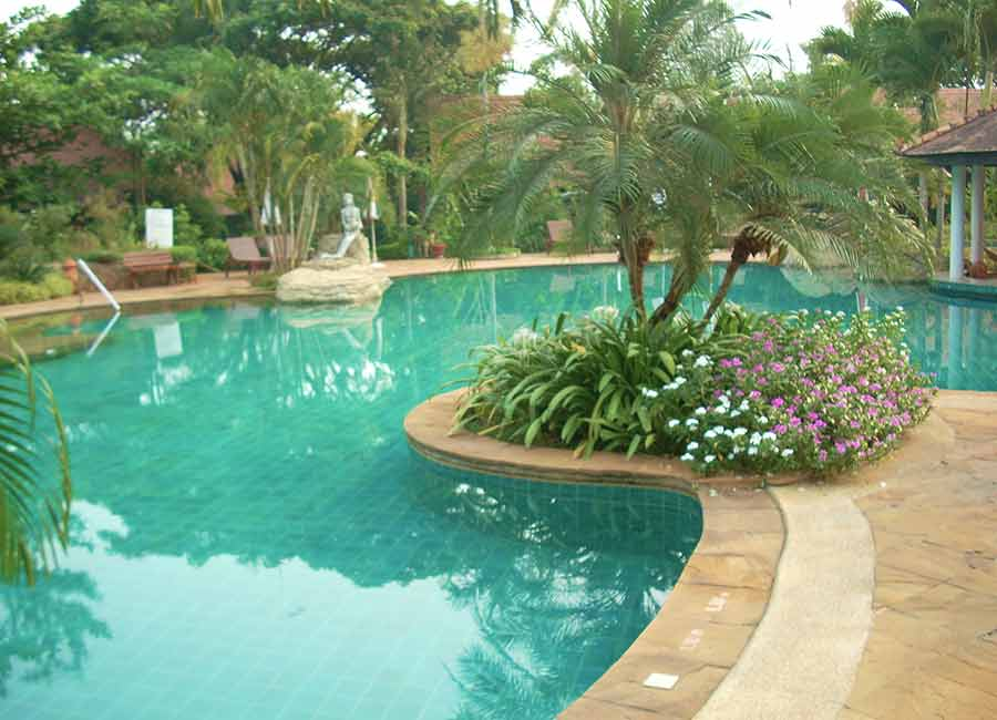 Northern-Delights.Golden-Pine-Chiang-Rai.Swimmingpool